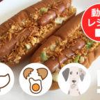 【第9弾】チキンラーメン創作メニュー『チキたまドッグ』動画レシピ公開!