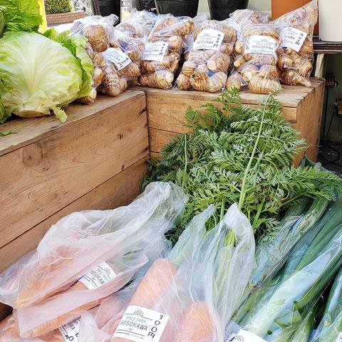 細河地域で採れた無農薬野菜①