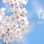 【動画】3/30・31は「池田五月山さくらまつり」へ!